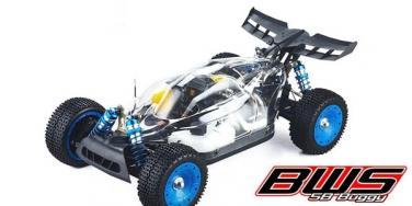 BWS 5B Buggy