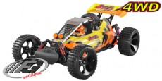 FG Baja 4WD Sports-Line
