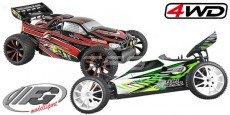 FG Fun Cross-Truggy 4WD
