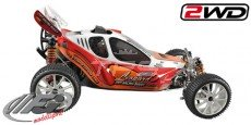 FG Leopard Competition 2WD